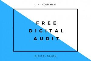JOHN free audit