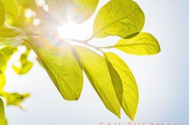 Avene-spf-sun-beautifuljobs